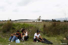 A group of Central American immigrants sit between vegetation for fear of organized crime bands in Huehuetoca, near Mexico City, June 1, 2015. An increasing number of Central Americans are sneaking across Mexico's border en route to the United States...