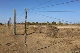 Wires of a fence are propped up in order for herders' livestock to pass through into Mugie Conservancy, Laikipia, Kenya, March 17, 2017. (Jill Craig/VOA)