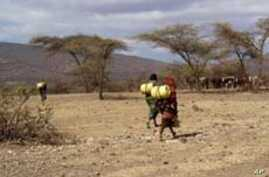 Somalia: Drought Brings Water Shortages, High Food Prices