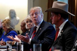 President Donald Trump leads a round-table discussion on border security, Jan. 11, 2019, in the Cabinet Room of the White House in Washington.