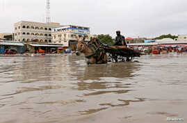 A donkey pulls a cart as they wade through a flooded street in Hamerweyne district of Mogadishu, Somalia, May 20, 2018.