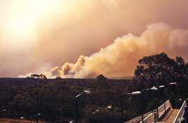 In this photo provided by the New South Wales Rural Fire Service, smoke rises from a fire near Springwood, west of Sydney, Thursday, Oct. 17, 2013. Nearly a hundred wildfires are burning across Australia's New South Wales state, more than a dozen of