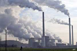 Coal burning power plants are the biggest source of carbon pollution, which is responsible for climate change, which is also driving animal decline.