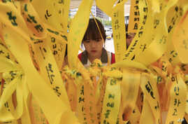 A high school student reads massages written on ribbons for the victims of the sunken ferry Sewol at a group memorial altar in Seoul, South Korea, May 15, 2014.