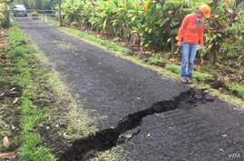 A Geologist inspects a crack that widened considerably in the past day on Old Kalapana Road. In other areas, new cracks have appeared along sections of Highway 130 in the past day, some with fume escaping, May 10, 2018.