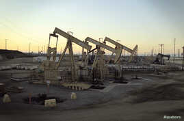 Oil rig pumpjacks, also known as thirsty birds, which is owned by Occidental Petroleum Corporation (Oxy), operates near Long Beach, California, July 30, 2013.