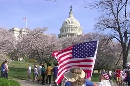 Tens of Thousands Rally for Immigration Reform