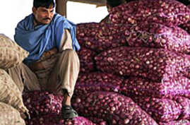 India Cuts Import Duty on Onions to Fight Inflation