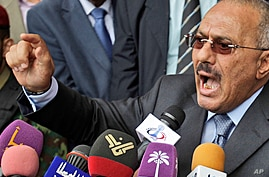 Yemen Opposition Signs Transition Deal