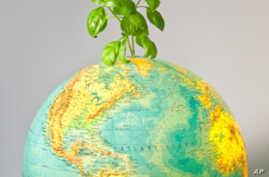 Millions Celebrating Earth Day Around the World