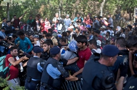 With people trampling and falling on each other amid the chaos, migrants push through a police line in Tovarnik, Croatia, Sept. 17, 2015.