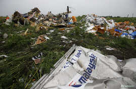 Wreckage from the nose section of a Malaysian Airlines Boeing 777 plane which was downed on Thursday is seen near the village of Rozsypne, in the Donetsk region July 18,