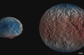 NASA's Dawn spacecraft determined the hydrogen content of the upper yard, or meter, of Ceres' surface. Blue indicates where hydrogen content is higher, near the poles, while red indicates lower content at lower latitudes. (NASA/JPL-Caltech/UCLA/MPS/D
