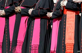 FILE - Bishops and cardinals attend Pope Francis' weekly general audience, at the Vatican, Sept. 27, 2017.