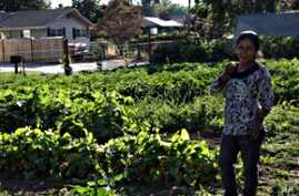 Farming Helps Refugees Put Down Roots
