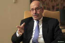 Mohamed El-Baradei speaks during an interview in his Cairo home, November 24, 2012 file photo.