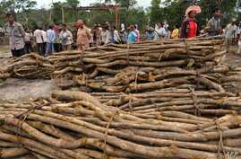 FILE - Cambodian villagers are pictured next to piles of timber in Koh Kong province, 300 kilometers southwest of Phnom Penh, in May 2012. The Cambodian government has long been battling the problem of illegal logging. Villagers in some areas have so
