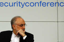 Iranian Foreign Minister Ali Akbar Salehi arrives at the 49th Conference on Security Policy in Munich February 3, 2013.