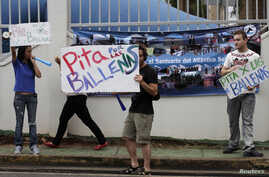 "Protesters stand on the street with placards reading ""Beep your horn for the Whales"" outside the building where the International Whaling Commission (IWC) is being held during this week in Panama City, July 4, 2012."