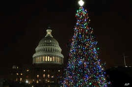The U.S. Capitol Christmas Tree is lit up during a ceremony on the West Front of the Capitol in Washington, Dec. 6, 2016.