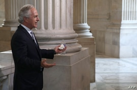 Sen. Bob Corker (R-TN), talks during a television interview at the U.S. Capitol in Washington, DC., Oct. 14, 2013.