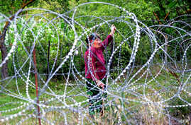 A woman looks through four-foot (1.2-metre) high coils of razor wire that divide the Russian-backed breakaway territory from Georgian-controlled land in village of Khurvaleti in Georgia, July 25, 2013.