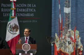 Mexican President Enrique Pena Nieto speaks during a signing ceremony for a historic energy reform bill, at the National Palace in Mexico City, Aug. 11, 2014.