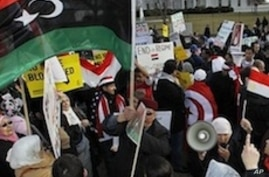 US Rally Highlights Calls For Freedom In the Arab World