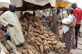 A woman shops for yams that have risen in price due to changes in Nigeria's fuel subsidy at Mile 12 market in Lagos, January 14, 2012.
