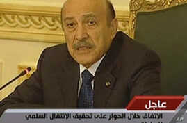 Egyptian VP Predicts Drop in Economic Growth