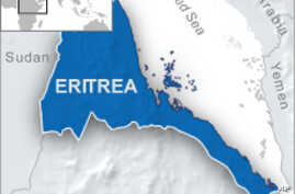 Analysts say Eritrea is Not Supporting al-Shabab