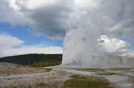 Old Faithful is the best-known geyser in Yellowstone National Park.