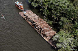 FILE PHOTO - Logs that were illegally cut from Amazon rainforest are transported on a barge on the Tapajos river, a tributary of the Amazon, near the city of Santarem, Para state April 18, 2013.