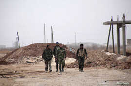 Forces loyal to Syria's President Bashar al-Assad carry their weapons as they walk along a road in the town of Tel Arn in Aleppo after capturing it from rebels November 12, 2013.