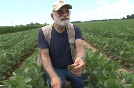University of Maryland soil scientist Ray Weil says tilled soil erodes more easily and holds less water.