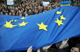Activists  wave  European Union flags during a rally in support of Ukraine's integration with the European Union in the center of Lviv, Western Ukraine, Nov. 22, 2013.