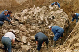 International War Crimes Tribunal investigators clear away soil and debris from dozens of Srebrenica victims buried in a mass grave near the village of Pilica, some 55 kms (32 miles) north east of Tuzla. (File 2006)