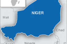 Niger's Consultative Council Calls for 11-Month Transition to Civilian Rule