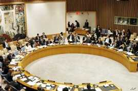 2011 Difficult for UN Security Council Unity