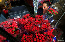 FILE - An employee organises bouquets of flowers to be exported overseas, ahead of Valentine's Day, at Discovery Farm in Facatativa, Colombia, Feb. 8, 2018.