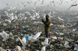 A man searches through trash for food and salable items at the main city dump in Libreville, Gabon, Feb. 29, 2008.