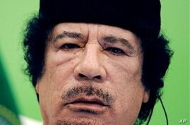Russia Offers Help in Mediating Gadhafi's Exit But Says No Asylum