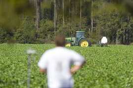 A tractor sprays pesticide on a US farm
