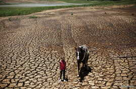 FILE - Paula, 7, poses with her horse on the cracked ground of Atibainha dam, part of the Cantareira reservoir, in Nazare Paulista, near Sao Paulo, Brazil, February 12, 2015.