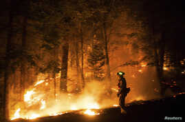 A firefighting crew watches a back fire after sunset on the Rim Fire near Buck Meadows, California, Aug. 22, 2013.