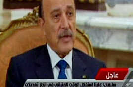 Egypt's VP Says Mubarak Departure Would Bring 'Chaos'