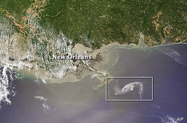 Gulf oil spill creeps towards Mississippi delta, 29 Apr 2010