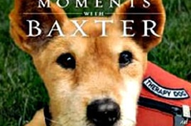 """In her book, """"Moments with Baxter"""", Joseph shares true stories about the connection Baxter made with terminally ill people"""