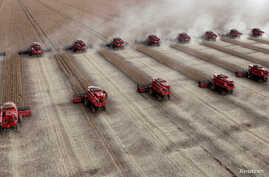 FILE - Workers harvest soybeans in a farm in the city of Tangara da Serra, Brazil, March 27, 2012.