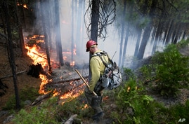 Firefighter Russell Mitchell monitors a back burn during the Rim Fire near Yosemite National Park, California, Aug. 27, 2013.